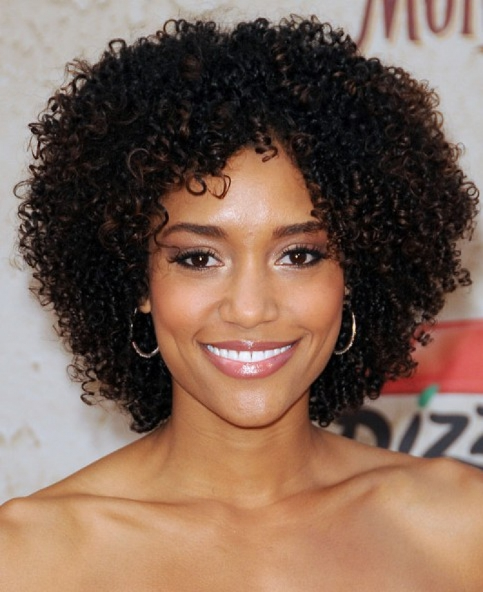 Best Short Curly Black Hairstyles 2014 - Short Hairstyles 2018