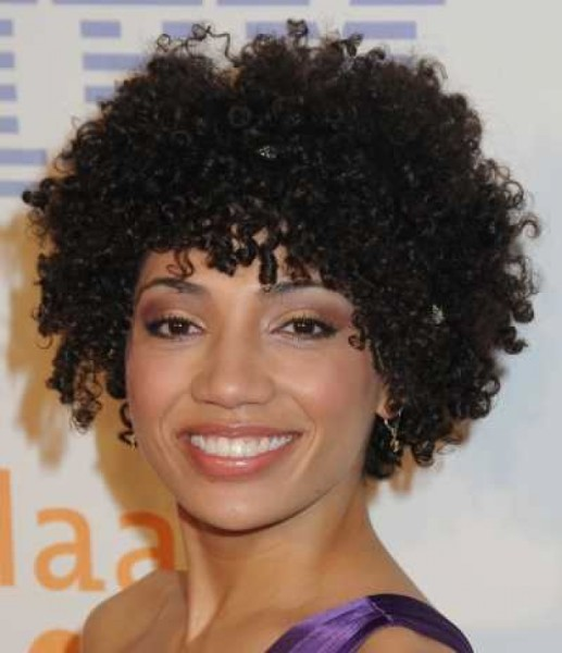 Short Natural Curly Hairstyles for Black Women | Short Haircuts Styles
