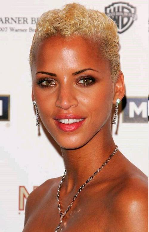 2014 Short Hair Trends for Black Women