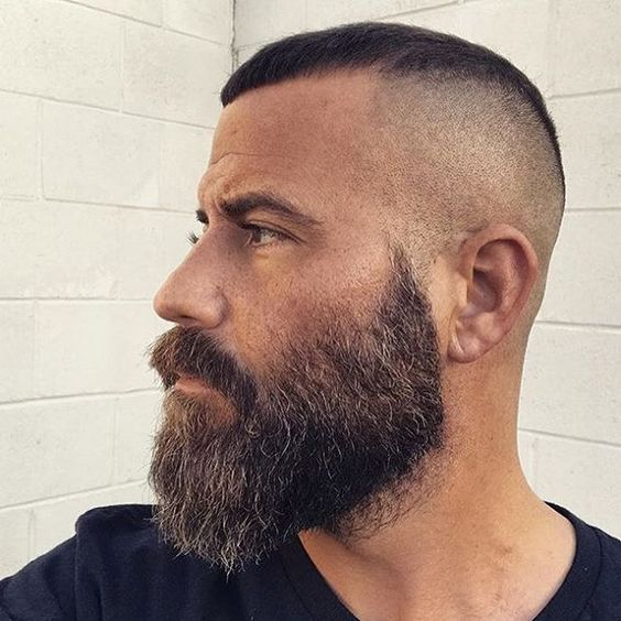 Short Hairstyle with Groomed Beards hairstyles for older men with beards 6