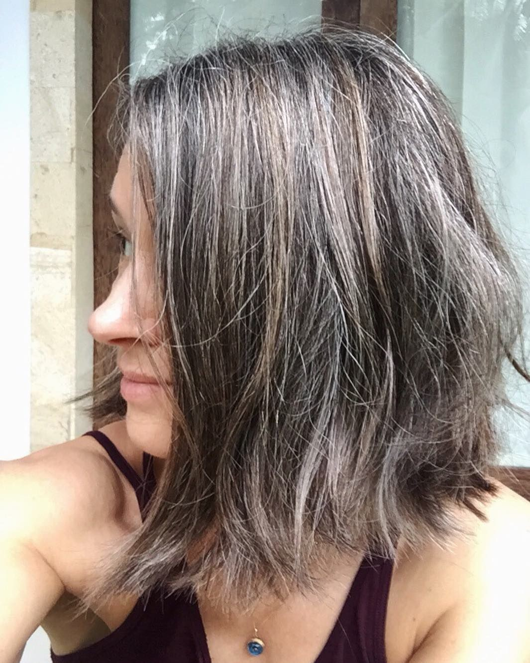 Natural Gray with Highlights